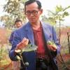 ความเป็นมาของมะเดื่อฝรั่ง....ในประเทศไทย