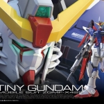 Destiny Gundam (RG) สเกล 1/144 แท้จากญี่ปุ่น