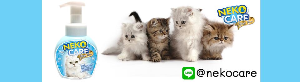 Neko Care แชมพูโฟมอาบแห้งสำหรับแมว