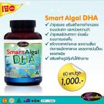 Smart Algal DHA 3 กระปุก